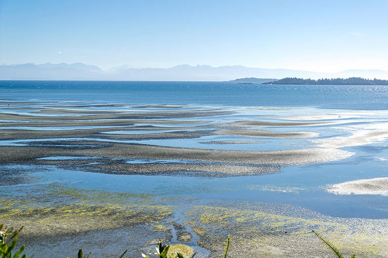 Expansive sand of Rathtrevor Beach in Parksville