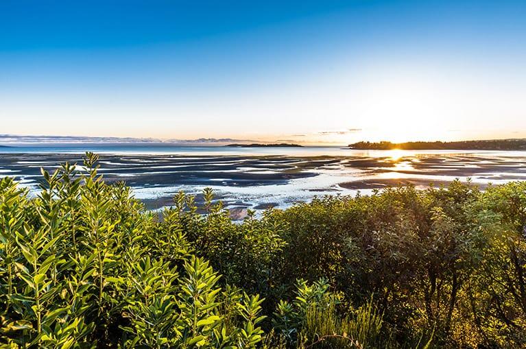 Rathtrevor Beach just steps away from Ocean Trails Resort